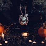 10 spannende Fakten über Halloween