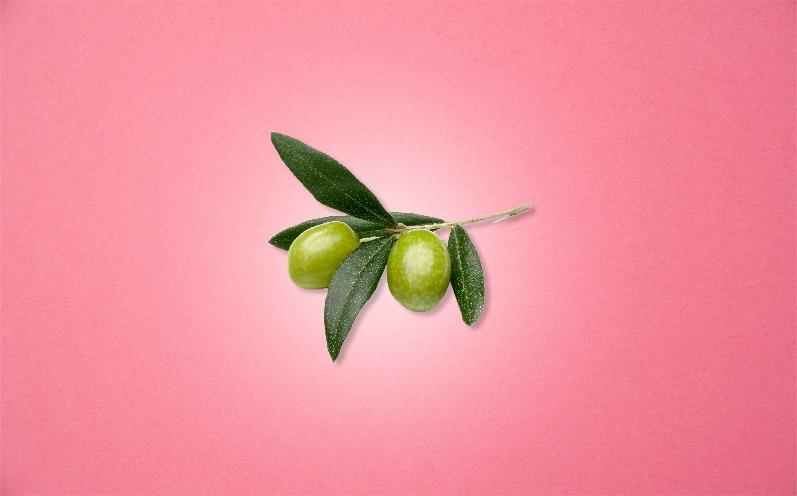 Baby Größe Schwangerschaftswoche 10 Olive