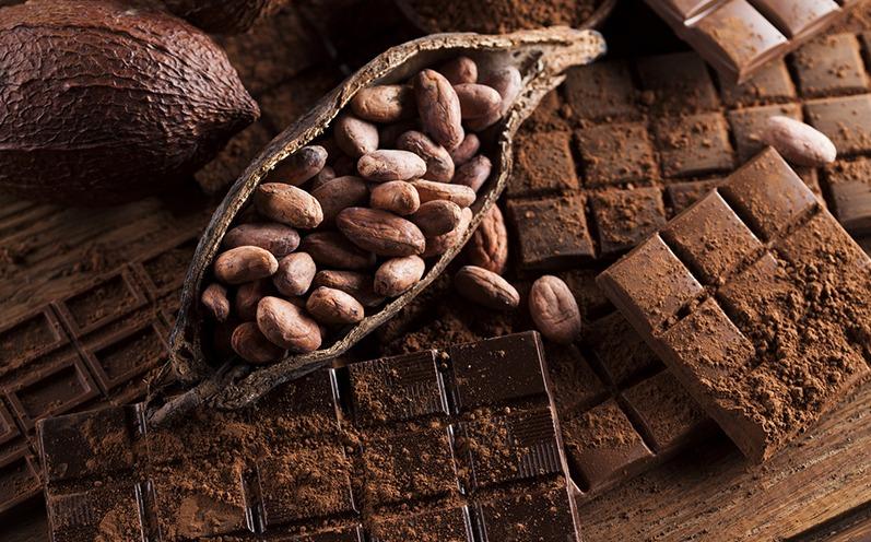 Die Wahrheit über Schokolade