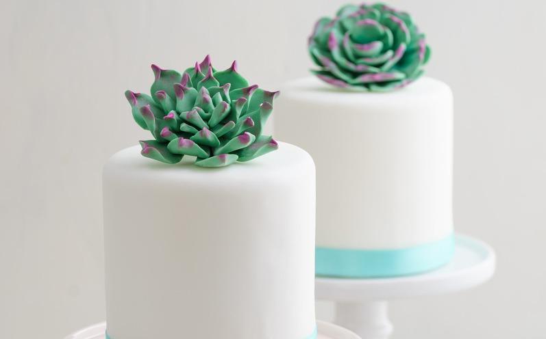 Hochzeitstorte: Sukkulenten Kuchen sind jetzt im Trend