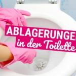 Braune Ablagerungen in der Toilette? Diese Tricks helfen sofort!