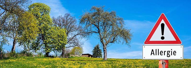 Pollenflug löst Allergien aus!
