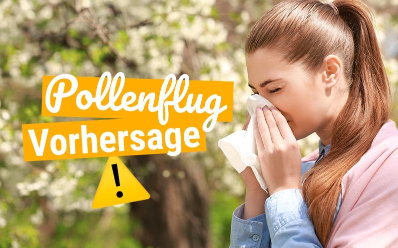 Pollenflug: Monatsübersicht für 2019
