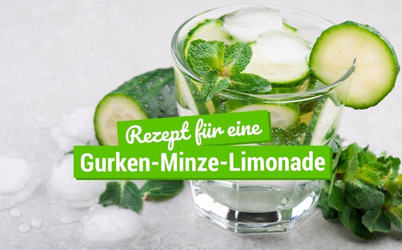 Rezept für eine Gurken-Minze-Limonade