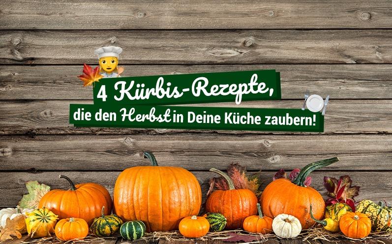 4 Kürbis-Rezepte, die den Herbst in Deine Küche zaubern!